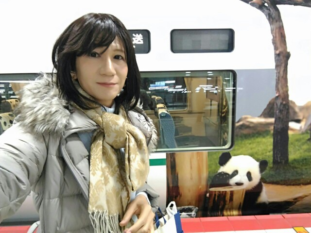 f:id:hikarireinagatsuki:20181220220103j:image