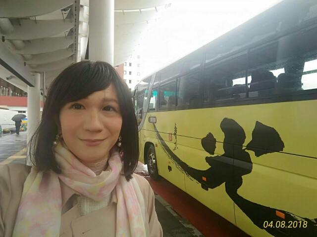 f:id:hikarireinagatsuki:20190106140019j:image