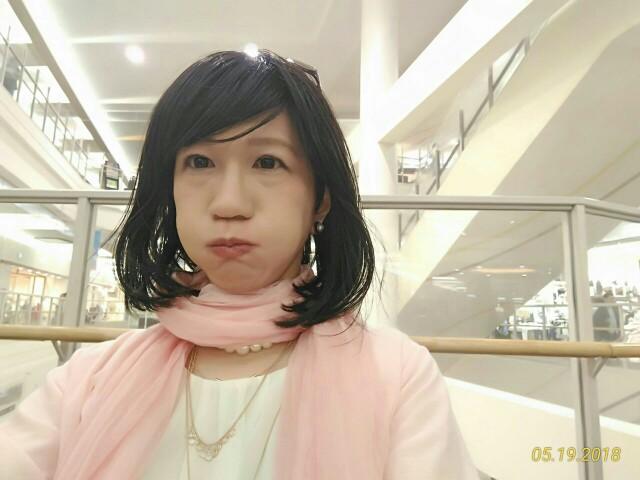 f:id:hikarireinagatsuki:20190129230833j:image