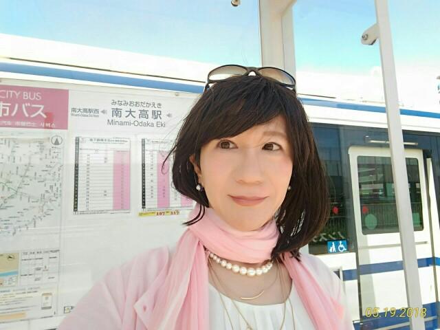 f:id:hikarireinagatsuki:20190129230902j:image