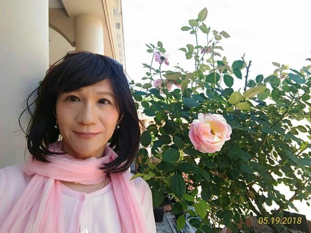 f:id:hikarireinagatsuki:20190130225314j:image