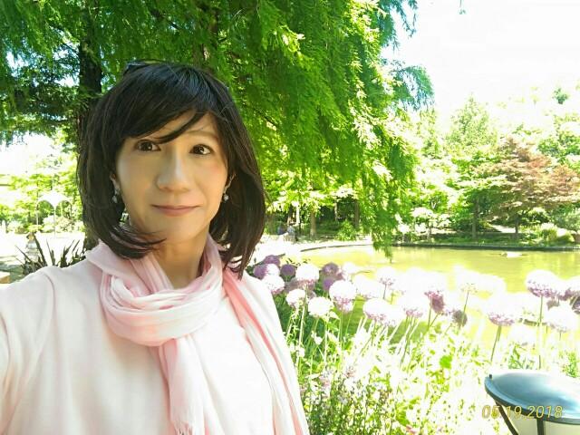 f:id:hikarireinagatsuki:20190130225425j:image