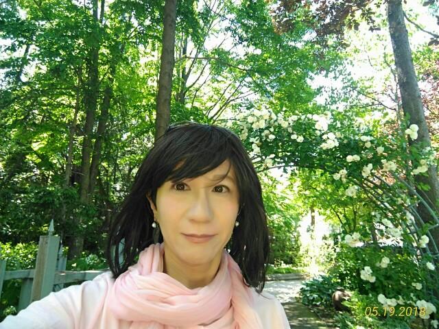 f:id:hikarireinagatsuki:20190130225519j:image