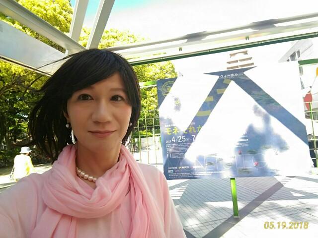 f:id:hikarireinagatsuki:20190130230305j:image