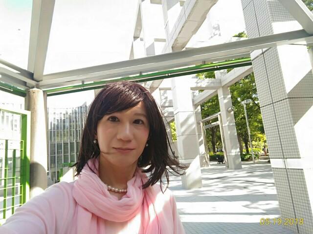 f:id:hikarireinagatsuki:20190130230352j:image