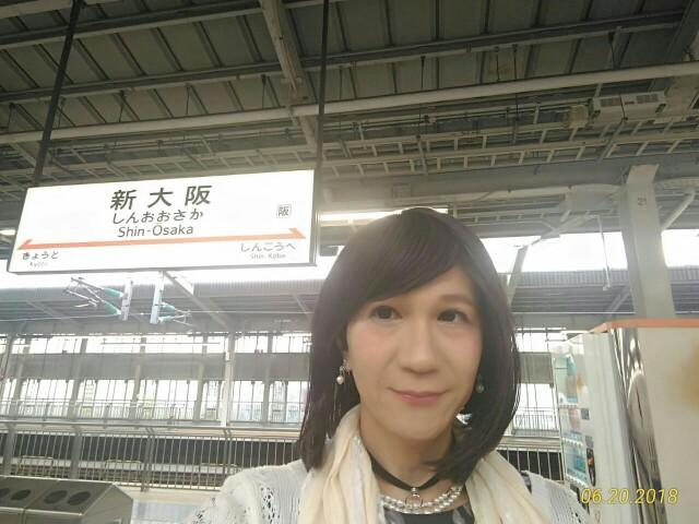 f:id:hikarireinagatsuki:20190205001259j:image