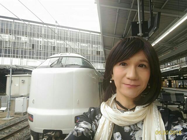 f:id:hikarireinagatsuki:20190205003616j:image