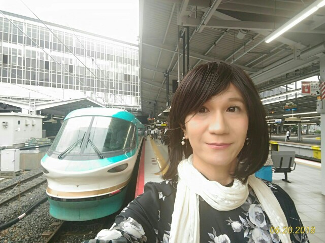 f:id:hikarireinagatsuki:20190205003735j:image