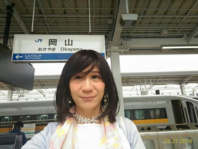 f:id:hikarireinagatsuki:20190208121955j:image