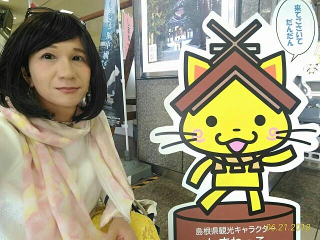 f:id:hikarireinagatsuki:20190208142801j:image