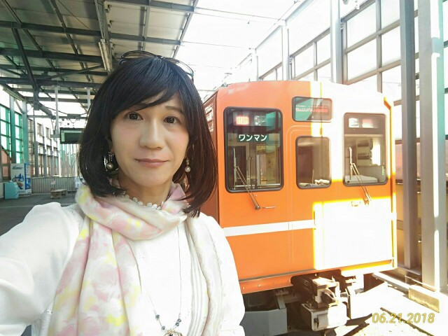 f:id:hikarireinagatsuki:20190208142834j:image
