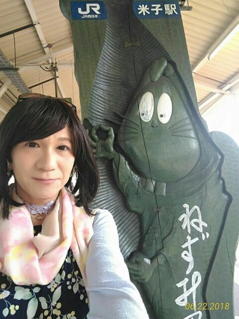 f:id:hikarireinagatsuki:20190208155439j:image