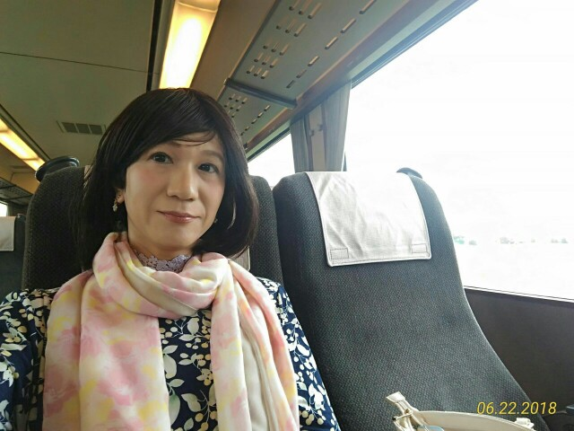 f:id:hikarireinagatsuki:20190208160215j:image