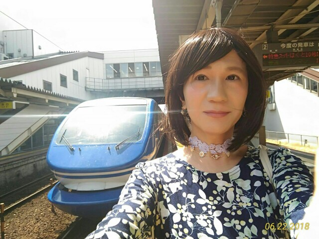 f:id:hikarireinagatsuki:20190208160504j:image