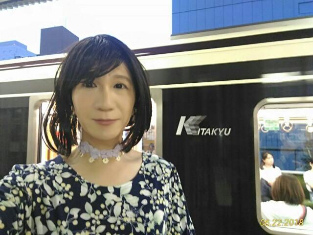 f:id:hikarireinagatsuki:20190208161115j:image