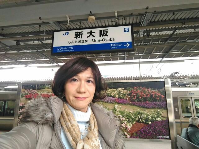 f:id:hikarireinagatsuki:20190216234955j:image