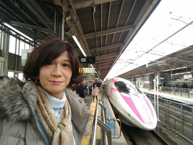 f:id:hikarireinagatsuki:20190216235053j:image