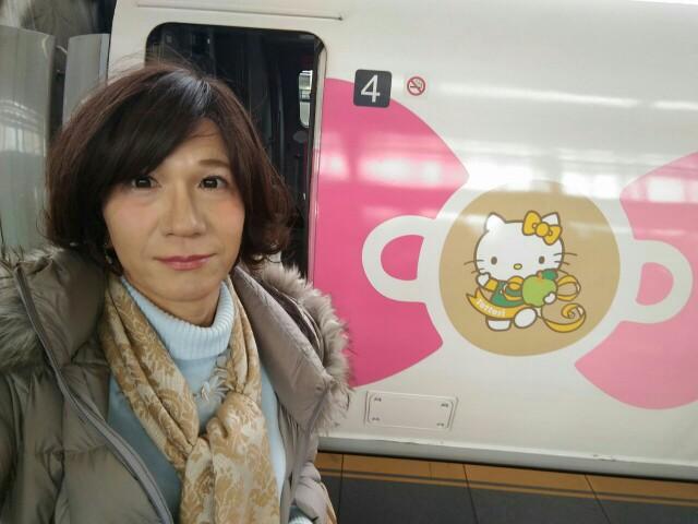 f:id:hikarireinagatsuki:20190216235400j:image