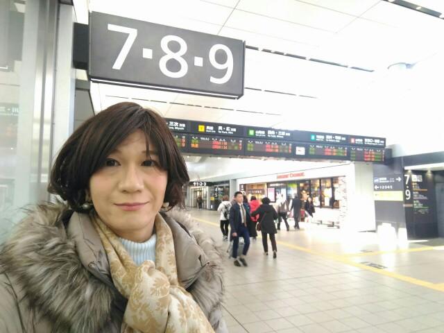 f:id:hikarireinagatsuki:20190219235753j:image