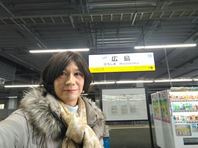 f:id:hikarireinagatsuki:20190219235825j:image