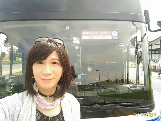 f:id:hikarireinagatsuki:20190303220233j:image