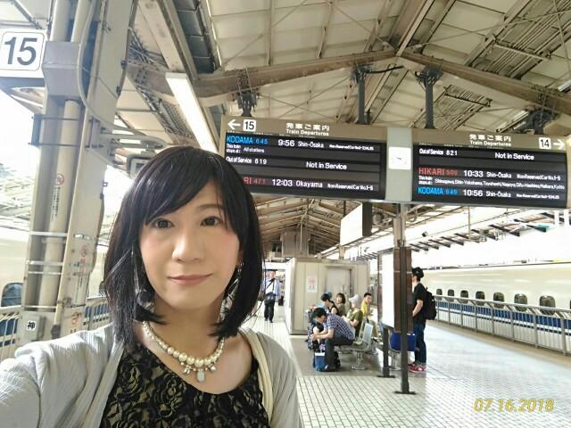 f:id:hikarireinagatsuki:20190306093342j:image