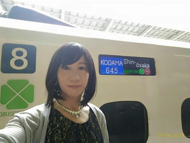 f:id:hikarireinagatsuki:20190306093402j:image