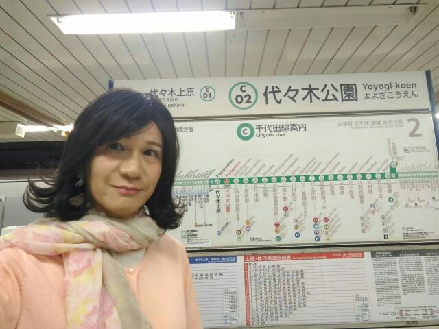f:id:hikarireinagatsuki:20190502150550j:image