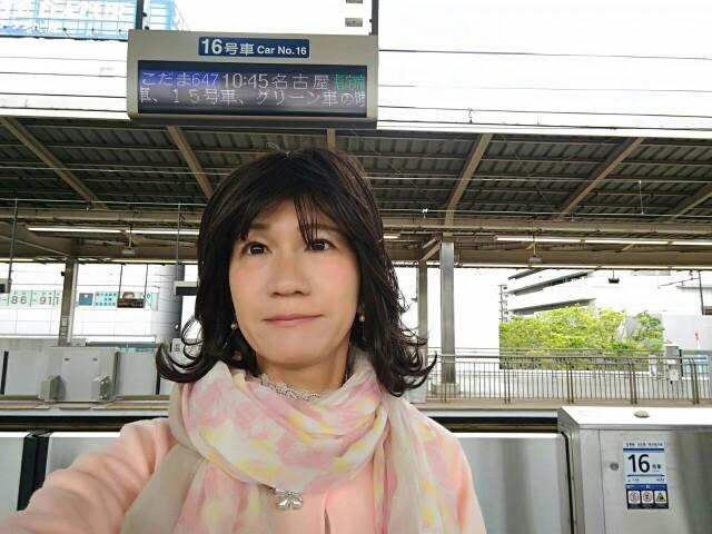 f:id:hikarireinagatsuki:20190502152907j:image
