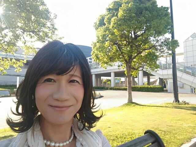 f:id:hikarireinagatsuki:20190528193825j:image