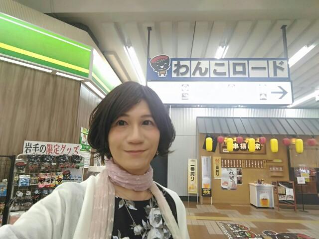 f:id:hikarireinagatsuki:20190623092349j:image