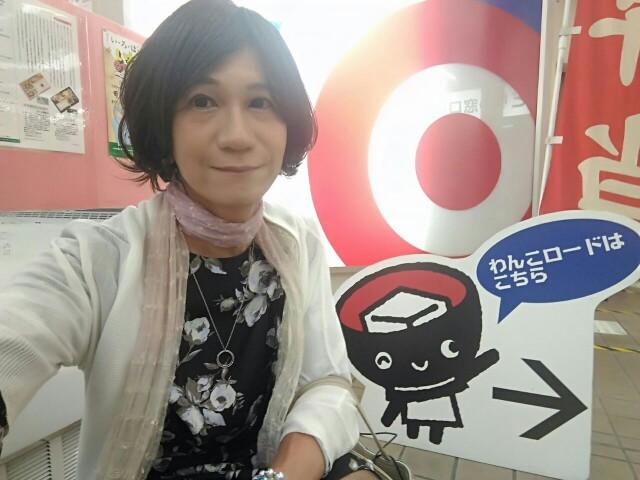 f:id:hikarireinagatsuki:20190623092607j:image