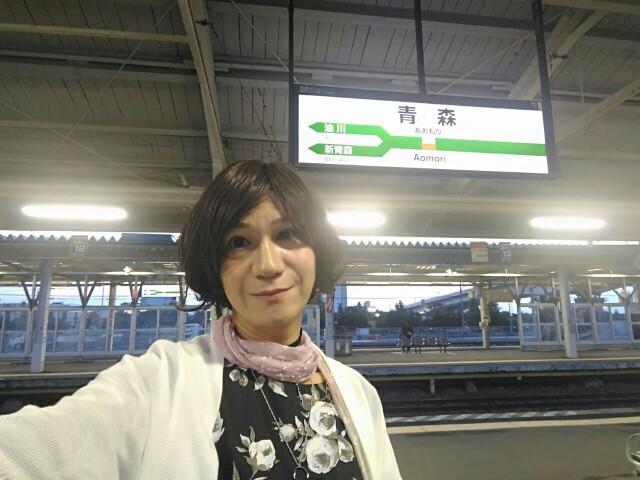 f:id:hikarireinagatsuki:20190623092946j:image