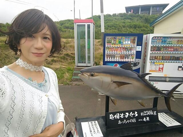 f:id:hikarireinagatsuki:20190623103731j:image