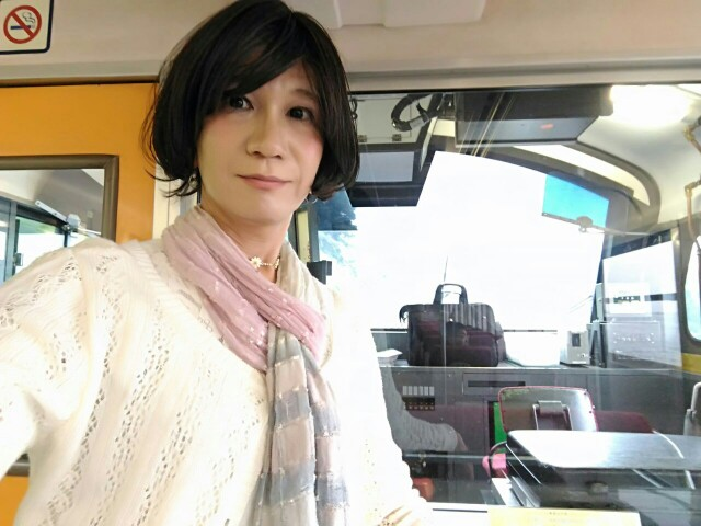 f:id:hikarireinagatsuki:20190703005134j:image