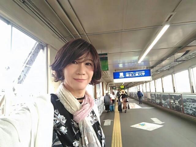 f:id:hikarireinagatsuki:20190703005825j:image