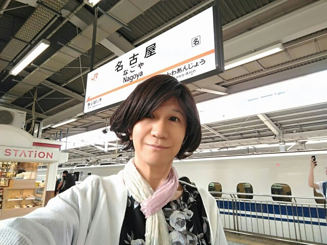 f:id:hikarireinagatsuki:20190703010047j:image