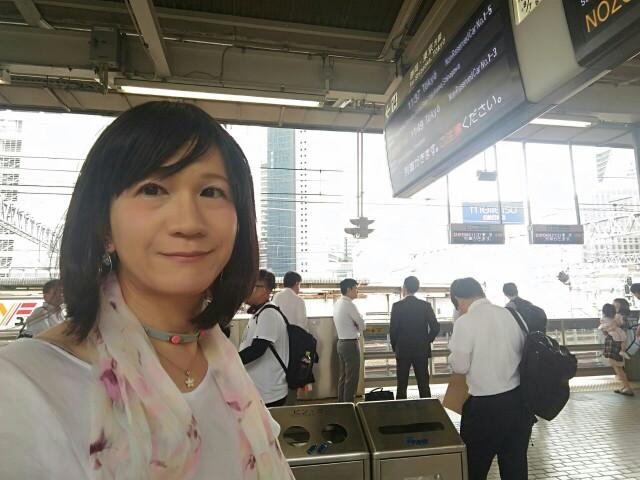 f:id:hikarireinagatsuki:20190715231724j:image