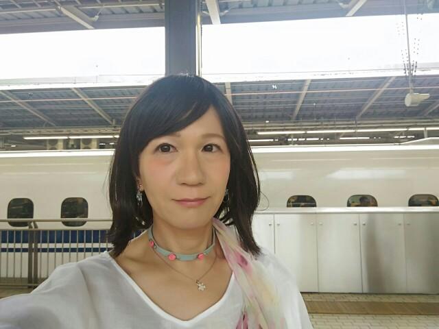 f:id:hikarireinagatsuki:20190715231811j:image