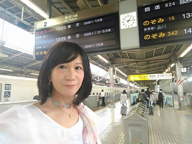 f:id:hikarireinagatsuki:20190715231831j:image