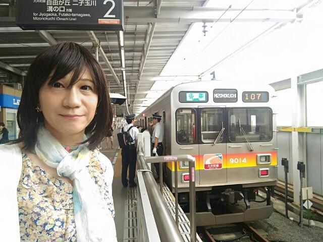 f:id:hikarireinagatsuki:20190715232358j:image