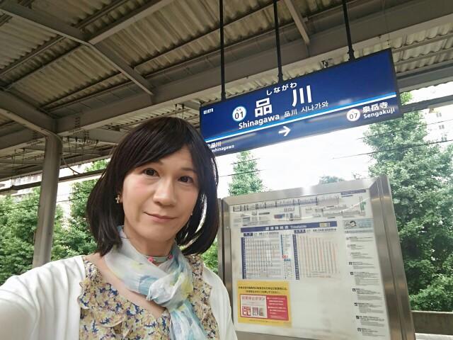 f:id:hikarireinagatsuki:20190716001845j:image