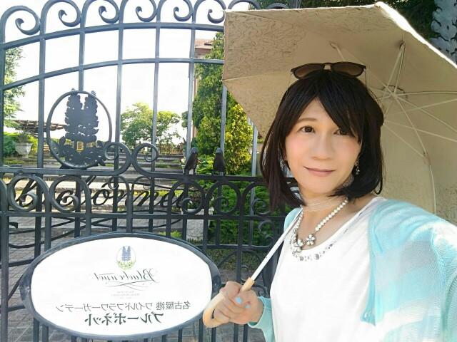 f:id:hikarireinagatsuki:20190806000343j:image