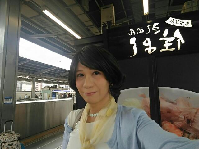 f:id:hikarireinagatsuki:20190826093549j:image