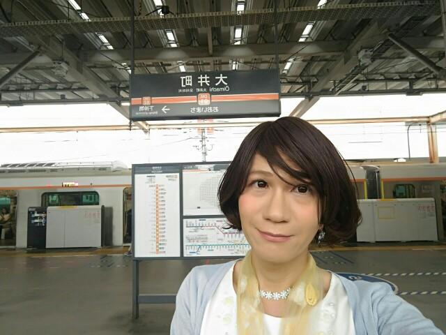 f:id:hikarireinagatsuki:20190826094022j:image
