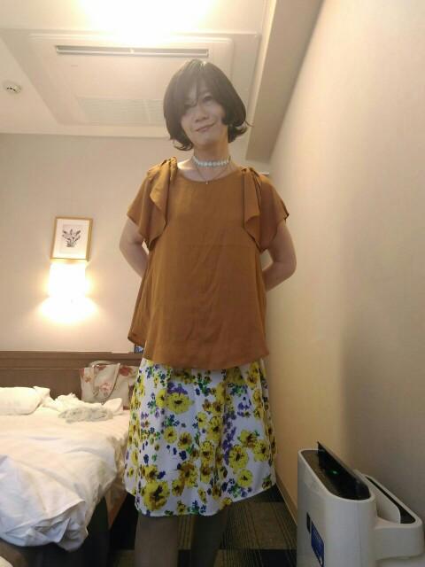 f:id:hikarireinagatsuki:20190827132536j:image