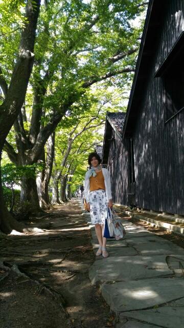f:id:hikarireinagatsuki:20190827144951j:image
