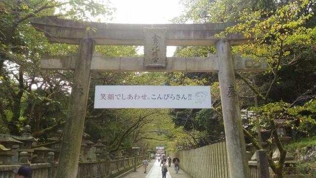 f:id:hikarireinagatsuki:20190929192000j:image