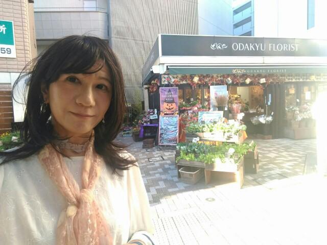 f:id:hikarireinagatsuki:20191018010410j:image