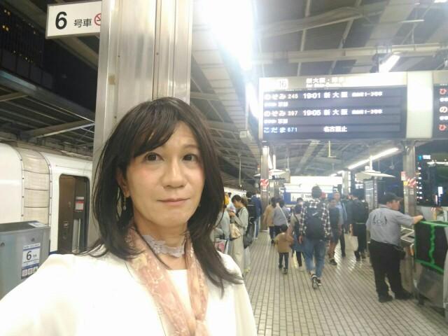f:id:hikarireinagatsuki:20191018010630j:image